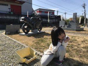 大阪石材南大阪店のお墓の展示場で草引きです。