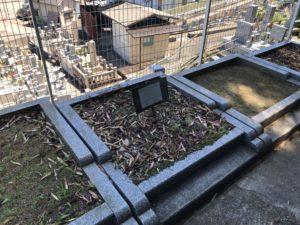 三日市墓地の空き区画