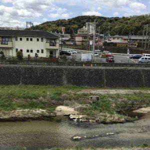 喜多町墓地の横に流れる川