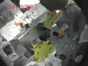 中国産623の薄片です