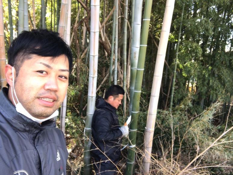 和泉店の竹を切る