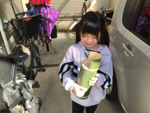 大阪石材泉店で竹を切る