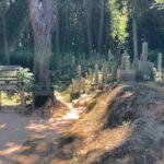 吉年墓地(千早赤阪村)のご紹介。千早赤阪村の霊園お墓案内。